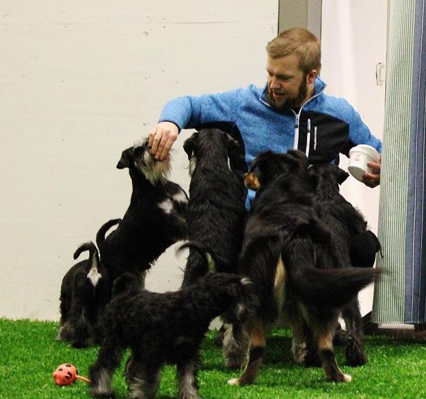 Hönsetorps valpträff på GBG hundarena 137