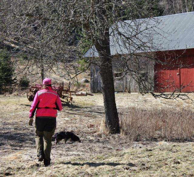 2013-04-20 Heldag i skogen 079