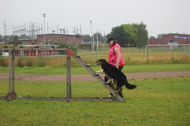 Träning Falköping 182