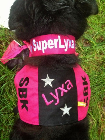 superlyxa