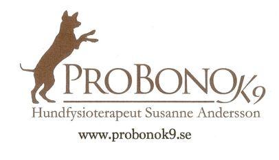 Probonologga